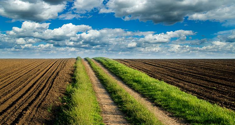 Krediti za kupovinu zemlje u Vojvodini