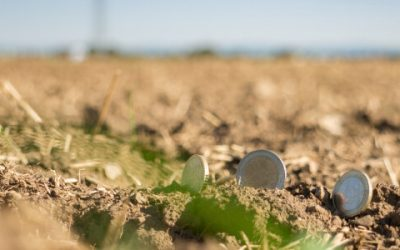 Proširena podrška mladim poljoprivrednicima do 3000-ditog na rang listi